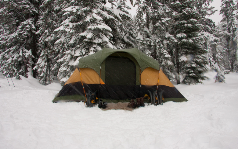 green tent in front of pines covered in snow