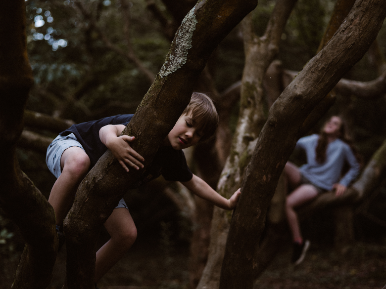 young boy and girl climbing in a tree