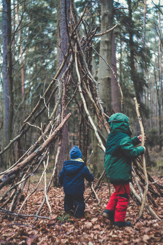 two children building small lean to out of sticks in the pine forest