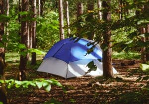 blue and gray tent in a green forest